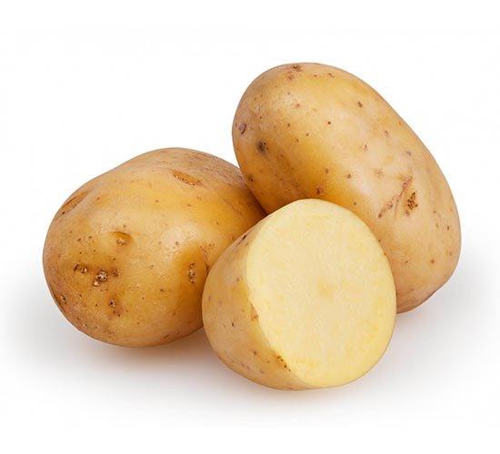 potato_crop