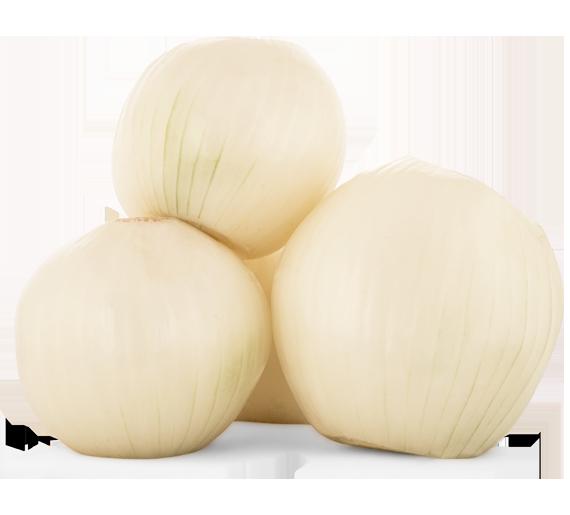 Soyulmus-Beyaz-Sogan